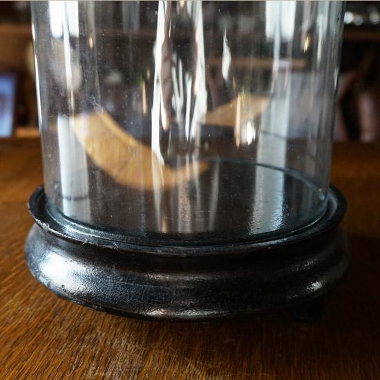 アンティーク ガラスドーム